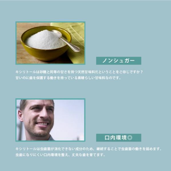 FuzzyRock ピーチ味 キシリトール 100% キャンディー タブレット あめ アメ こども 虫歯 甘い 歯磨き ノンシュガー 糖類 オフ 防災 歯 矯正|petittomall|06