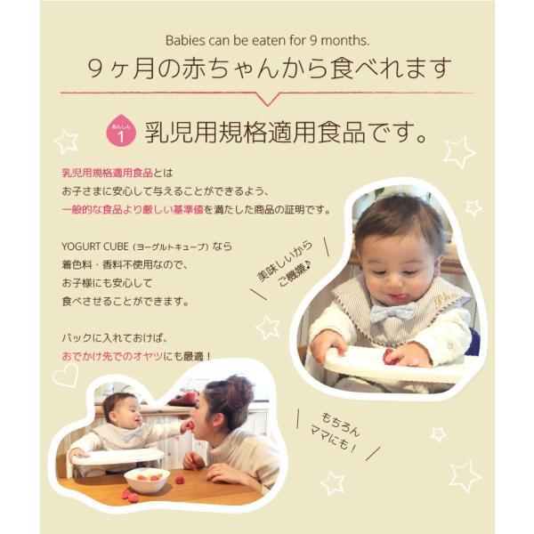 フリーズドライ フルーツ 食品 おやつ 赤ちゃん ヨーグルトキューブ いちご 16g 10パックセット ヨーグルト ベビーフード 防災|petittomall|10
