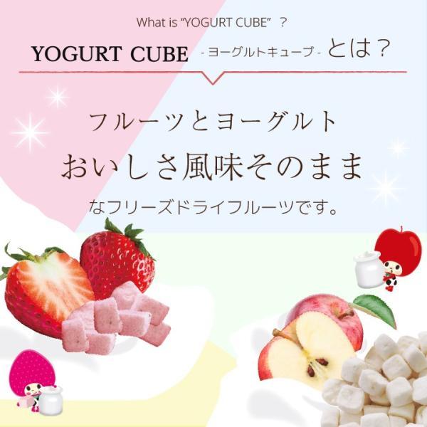 フリーズドライ 食品 フルーツ 無添加  砂糖不使用  yogurt cube ヨーグルトキューブ 未来果実 りんご 16g 10パックセット 無添加 ヨーグルト ベビーフード|petittomall|02
