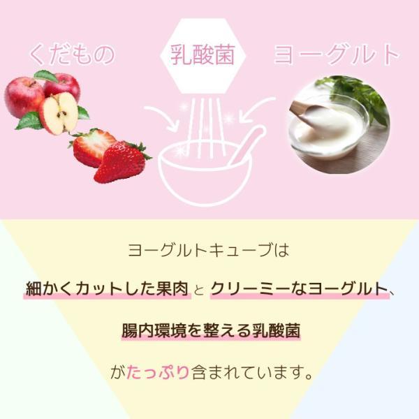 フリーズドライ 食品 フルーツ 無添加  砂糖不使用  yogurt cube ヨーグルトキューブ 未来果実 りんご 16g 10パックセット 無添加 ヨーグルト ベビーフード|petittomall|03