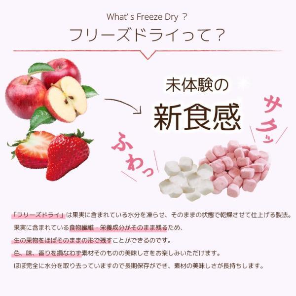 フリーズドライ 食品 フルーツ 無添加  砂糖不使用  yogurt cube ヨーグルトキューブ 未来果実 りんご 16g 10パックセット 無添加 ヨーグルト ベビーフード|petittomall|04
