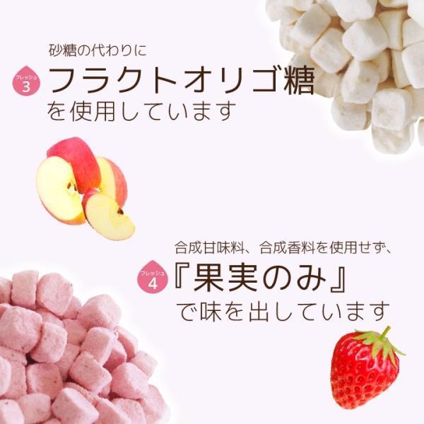 フリーズドライ 食品 フルーツ 無添加  砂糖不使用  yogurt cube ヨーグルトキューブ 未来果実 りんご 16g 10パックセット 無添加 ヨーグルト ベビーフード|petittomall|06