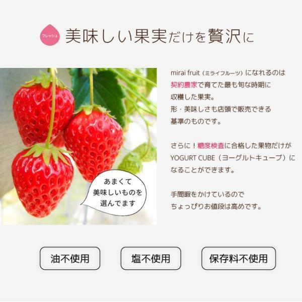 フリーズドライ 食品 フルーツ 無添加  砂糖不使用  yogurt cube ヨーグルトキューブ 未来果実 りんご 16g 10パックセット 無添加 ヨーグルト ベビーフード|petittomall|07