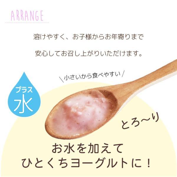 フリーズドライ 食品 フルーツ 無添加  砂糖不使用  yogurt cube ヨーグルトキューブ 未来果実 りんご 16g 10パックセット 無添加 ヨーグルト ベビーフード|petittomall|09