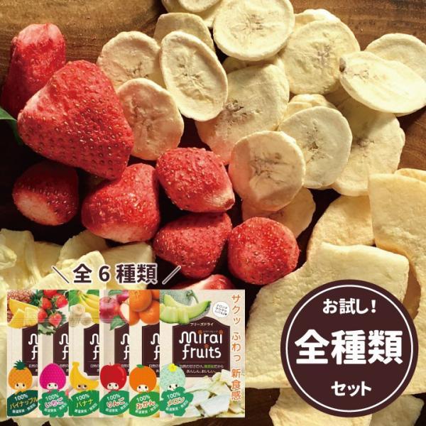フリーズドライフルーツ ミライフルーツ 未来果実 いちご りんご バナナ パイナップル みかん メロン全種類セット 無添加 砂糖不使用 ベビーフード|petittomall