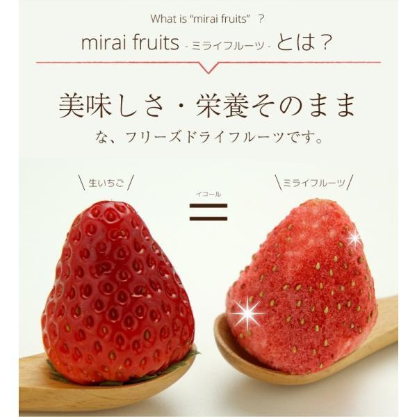 フリーズドライ  食品 フルーツ mirai fruits ミライフルーツ いちご りんご バナナ パイナップル みかん メロン 2種類選べる5+5個セット 無添加 砂糖不使用|petittomall|02