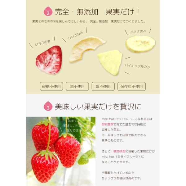 フリーズドライ  食品 フルーツ mirai fruits ミライフルーツ いちご りんご バナナ パイナップル みかん メロン 2種類選べる5+5個セット 無添加 砂糖不使用|petittomall|04