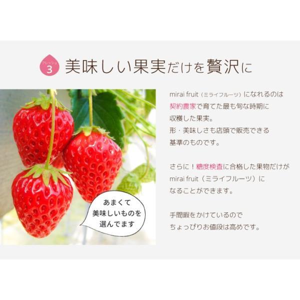 フリーズドライフルーツ mirai fruits ミライフルーツ  いちご りんご バナナ パイナップル みかん メロン 選べる2パックセット 無添加 ベビーフード 防災 petittomall 05