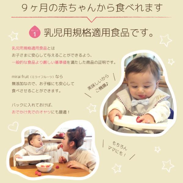 フリーズドライ 食品 フルーツ 無添加  りんご 12g×10パック セット 離乳食 お菓子 赤ちゃん ミライフルーツ mirai fruits  防災|petittomall|06