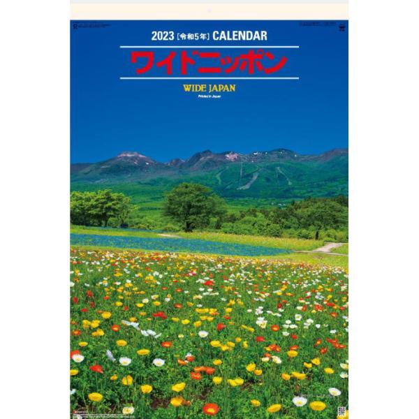 特大サイズフィルムカレンダー ワイドニッポン 2022 壁掛けカレンダー WIDE JAPAN  令和4年 風景カレンダー 日本の名勝 富士山 桜 紅葉
