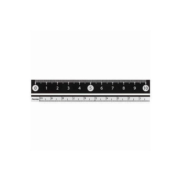 白黒 定規10cm 黒 APJ128B