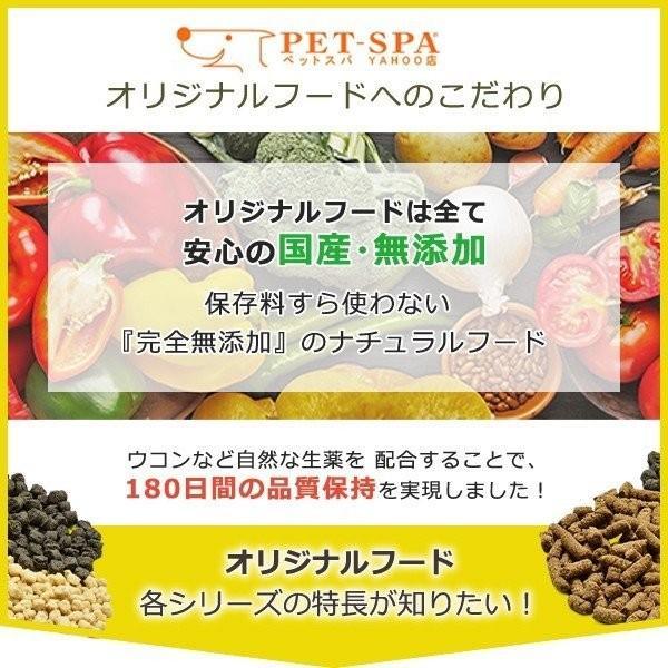 ドッグフード シニア ダイエット 国産 無添加 ホームメイドドッグフード シニア & ライト 900g × 3袋セット 小型犬 中大型犬 送料無料|petspa|02