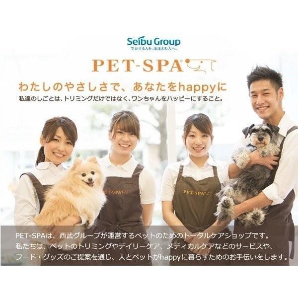 ドッグフード お試し 国産 無添加  PET-SPA オリジナルフード 選べるお試しセット 送料無料|petspa|21