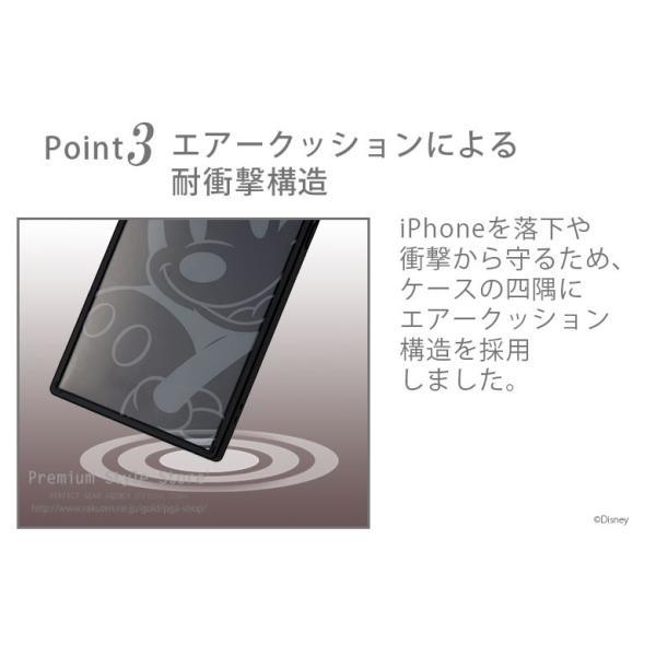 iPhone Xs/X用 ガラスハイブリッドケース|pg-a|04