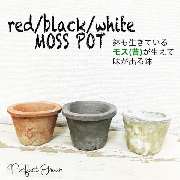 モスポット 3色から選べる5鉢 植木鉢 陶器鉢 テラコッタ鉢 素焼き鉢 鉢底穴アキ プランター おしゃれな植木鉢 mossポット 送料無料
