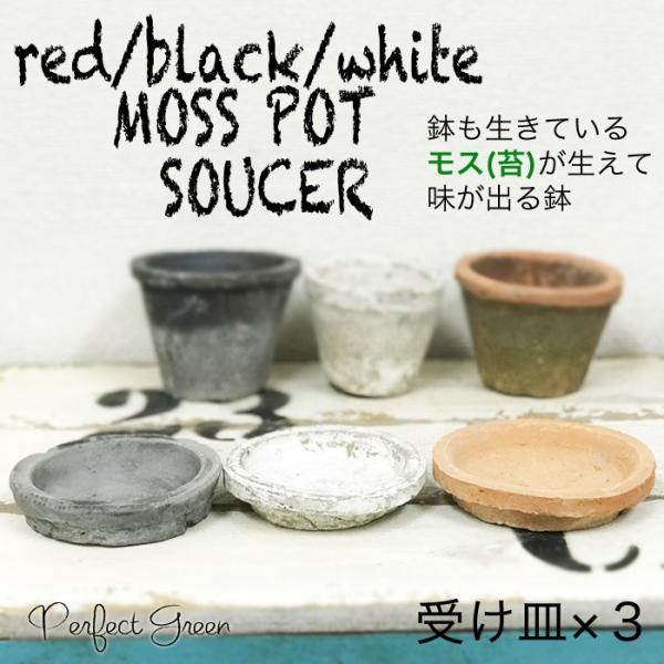 モスポット 受け皿 3色から選べる5個セット 植木鉢 ソーサー 陶器鉢 テラコッタ鉢 素焼き鉢 プランター おしゃれな植木鉢 mossポット 送料無料