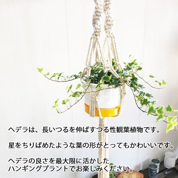 マクラメ プラント ハンギング おしゃれ 雑貨 吊り鉢 手編み|pg869|06
