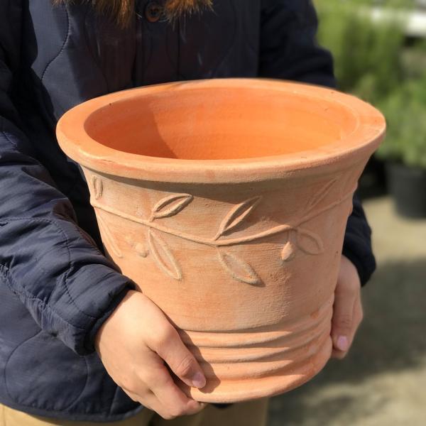 テラコッタ 植木鉢 中型 素焼き鉢 アンティーク 販売 おしゃれ 即日出荷 送料無料|pg869|05