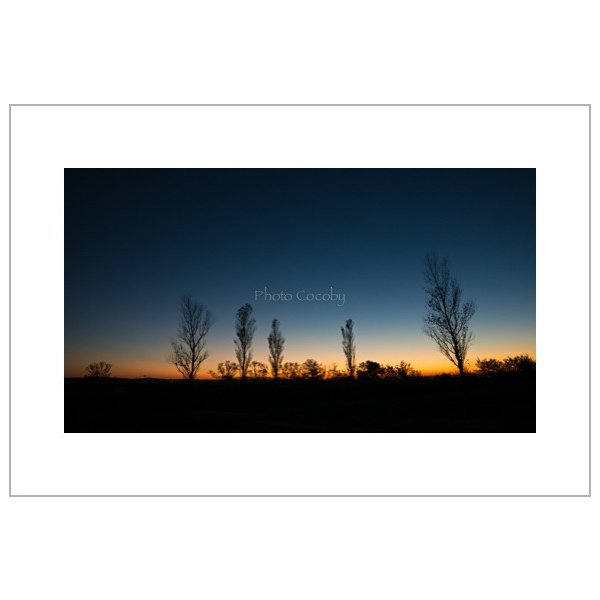 朝焼けのポストカード|photoroom-g