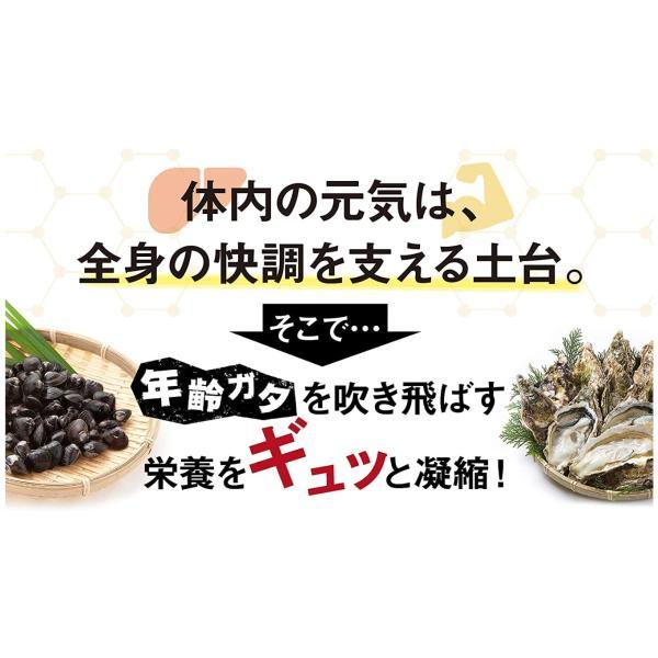 レバリズム L 90粒 ビタミンB2 健康習慣 肝心要 肝臓 お酒 飲酒 サプリメント 送料無料 定番 pia-store 04
