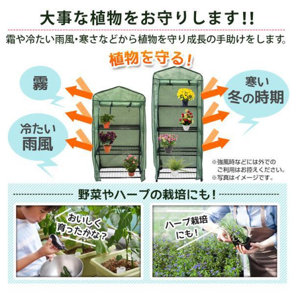 ビニールハウス ガーデンハウス ミニ 温室 フラワーハウス 家庭菜園 3段 ミニ温室 小型ビニールハウス|pickupplazashop|04