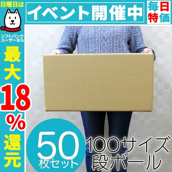 ダンボール 段ボール 100サイズ 50枚 持ち手穴付き 茶色 日本製 引越し 無地 梱包 梱包箱 ダンボール箱