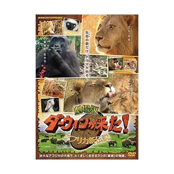 劇場版 ダーウィンが来た! アフリカ新伝説 / (DVD) NSDS-23860-NHK