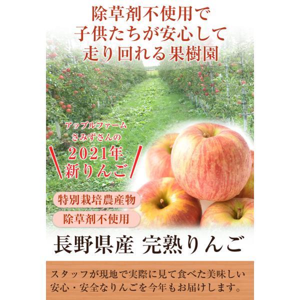 樹上完熟なので甘みが違う!「長野県産」りんご 5Kg(りんご 訳あり)(特別栽培農産物)|pika831|03