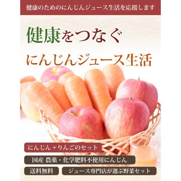 にんじん 人参 送料無料 野菜セット 無農薬にんじん5kg+慣行栽培りんご3kg|pika831|03