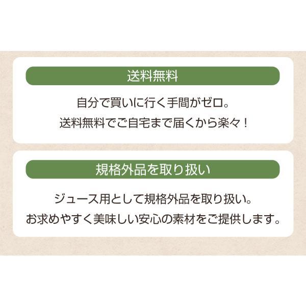 にんじん 人参 送料無料 野菜セット 無農薬にんじん5kg+慣行栽培りんご3kg|pika831|07