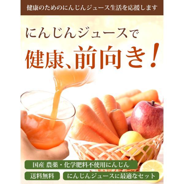 にんじん 人参 送料無料 野菜セット 無農薬にんじん5kg+慣行栽培りんご3kg+慣行栽培レモン1kg|pika831|03