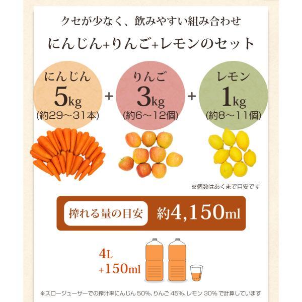 にんじん 人参 送料無料 野菜セット 無農薬にんじん5kg+慣行栽培りんご3kg+慣行栽培レモン1kg|pika831|04