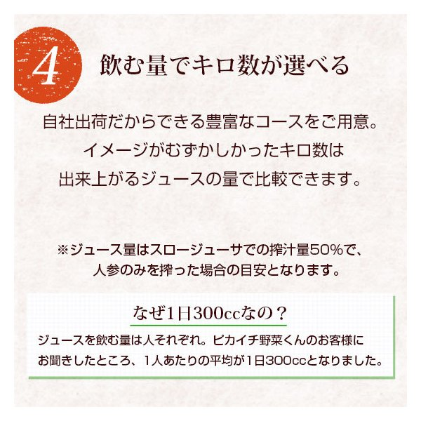 (最大26倍)無農薬にんじん ジュース用 10Kg 人参 ニンジン 国産 送料無料 訳あり|pika831|14