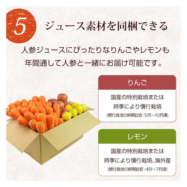 (最大26倍)無農薬にんじん ジュース用 10Kg 人参 ニンジン 国産 送料無料 訳あり|pika831|15
