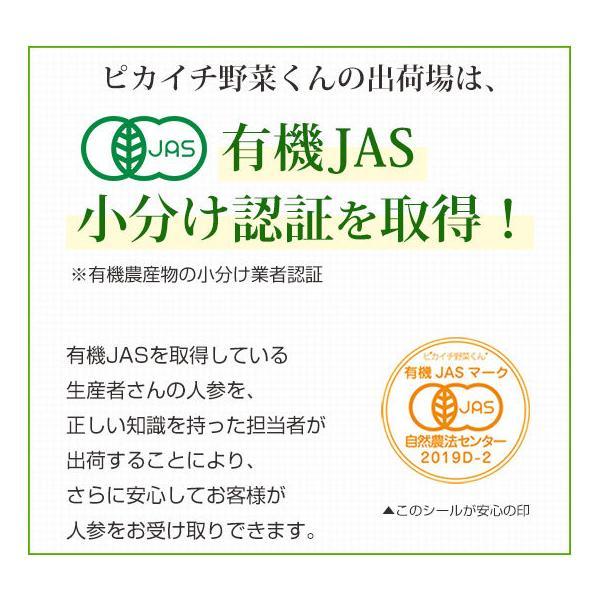 (最大26倍)無農薬にんじん ジュース用 10Kg 人参 ニンジン 国産 送料無料 訳あり|pika831|16