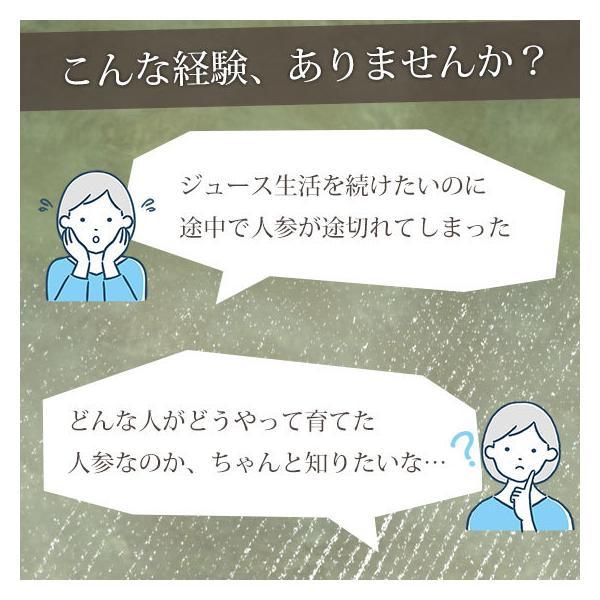 (最大26倍)無農薬にんじん ジュース用 10Kg 人参 ニンジン 国産 送料無料 訳あり|pika831|17