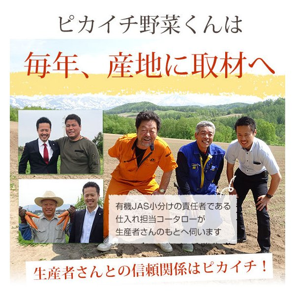 (最大26倍)無農薬にんじん ジュース用 10Kg 人参 ニンジン 国産 送料無料 訳あり|pika831|19
