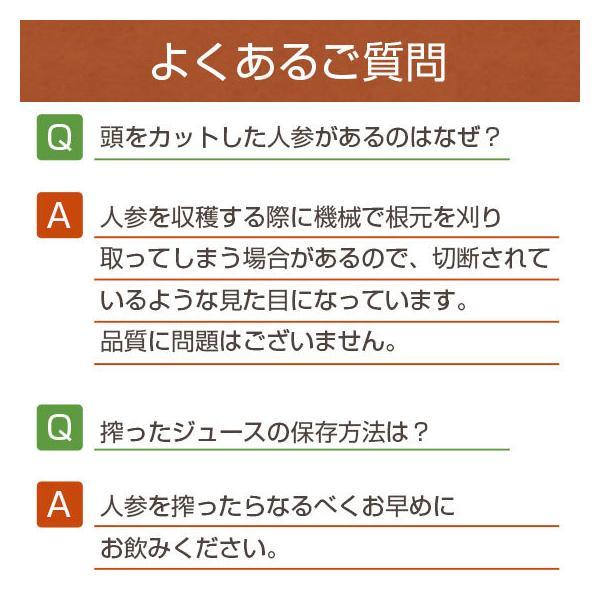 無農薬 にんじん ジュース用 10Kg 人参 ニンジン 国産 送料無料 訳あり グルメ pika831 20