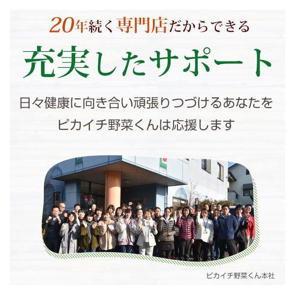 (最大26倍)無農薬にんじん ジュース用 10Kg 人参 ニンジン 国産 送料無料 訳あり|pika831|05