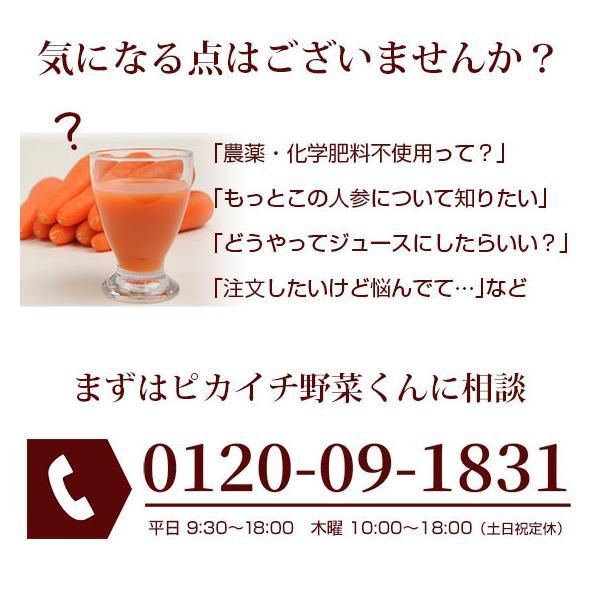 (最大26倍)無農薬にんじん ジュース用 10Kg 人参 ニンジン 国産 送料無料 訳あり|pika831|07
