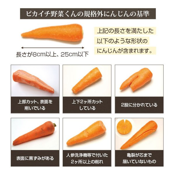 (最大26倍)無農薬にんじん ジュース用 10Kg 人参 ニンジン 国産 送料無料 訳あり|pika831|09