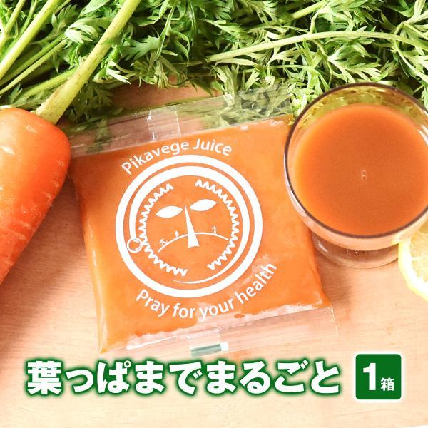 にんじん 人参 ジュース 葉っぱ付きまるごと冷凍にんじんジュース 1箱 100cc×30パック 無農薬 無添加 野菜ジュース 葉っぱ