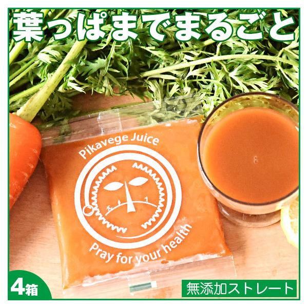 にんじん 人参 ジュース 葉っぱ付きまるごと冷凍にんじんジュース 4箱 100cc×120パック 無農薬 無添加 野菜ジュース 葉っぱ