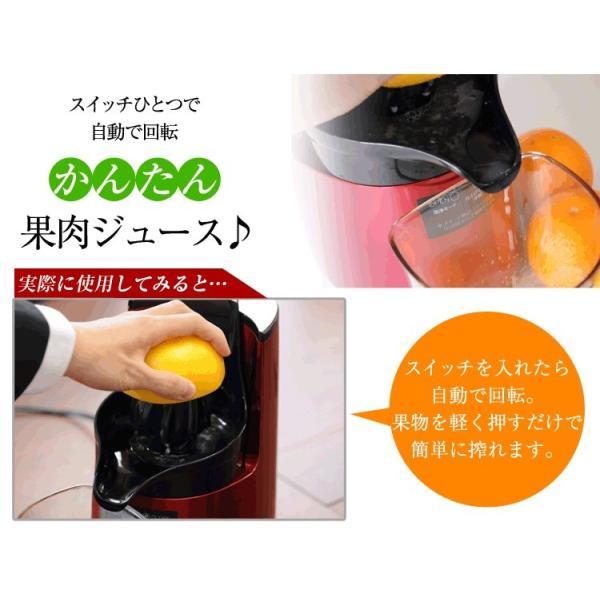 シトラススクイーザー 1個(ヒューロムスロージューサーH-AA、H2H、HH、HI専用)|pika831|02