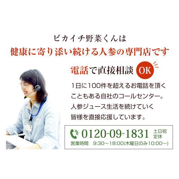 にんじんレモン冷凍ジュース 3箱 (100c×30p)(にんじんジュース)(冷凍)(無農薬人参) pika831 04