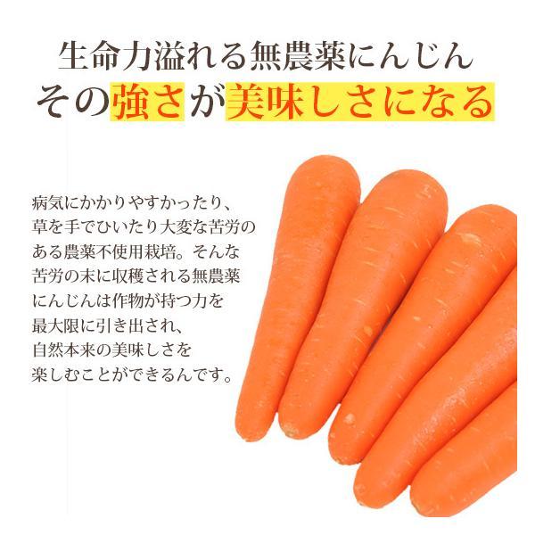 繊維入りにんじんりんごレモンジュース 1000ml×1本 栄養機能性食品 ビタミンA ストレートジュース 無農薬人参 食品|pika831|10