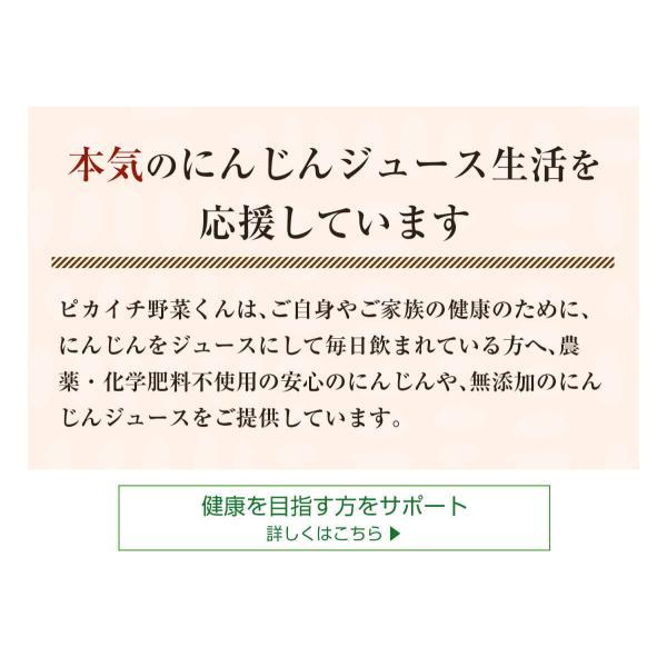ヒューロムスロージューサーH-AA H26 hurom HUROM公式 H-AA コールドプレスジューサー ジューサー ミキサー 人気|pika831|14