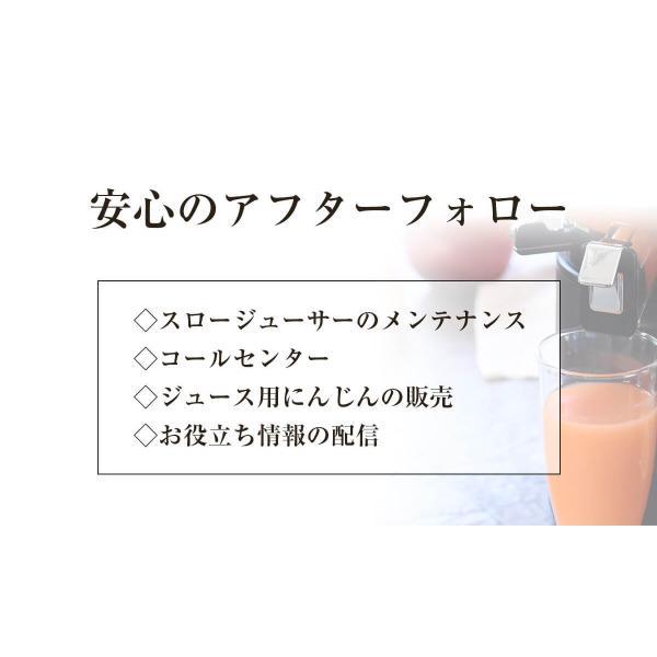 ヒューロムスロージューサーH-AA H26 hurom HUROM公式 H-AA コールドプレスジューサー ジューサー ミキサー 人気|pika831|15