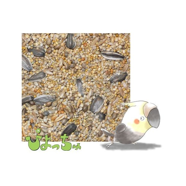 【送料込】【代引不可】オカメインコ春用ブレンド 200g|piyocyu-ash