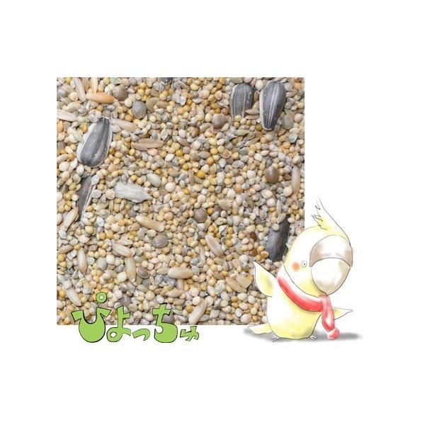 【送料込】【代引不可】オカメインコ冬用ブレンド 200g|piyocyu-ash